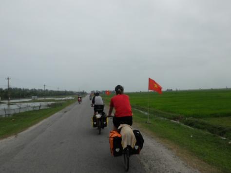 Rote Fahnen in den grünen Reisfeldern der vietnamesischen Provinz